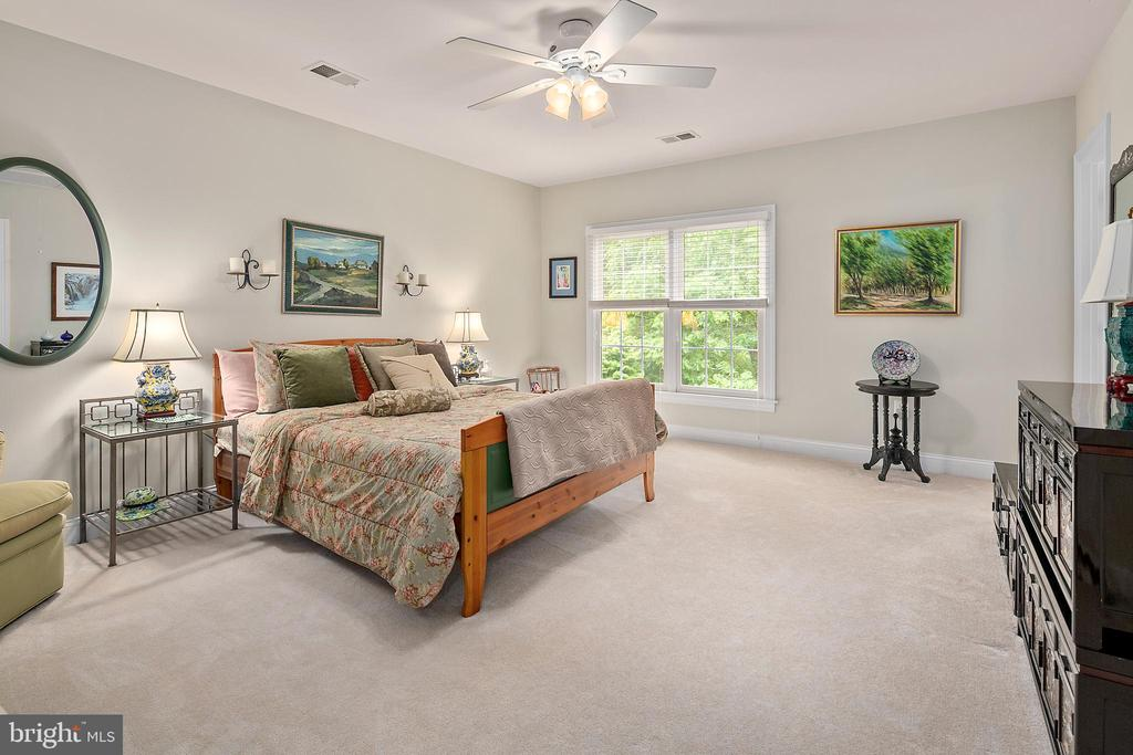 3rd Bedroom - 17504 CARLSON FARM CT, GERMANTOWN