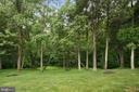 View - 17504 CARLSON FARM CT, GERMANTOWN