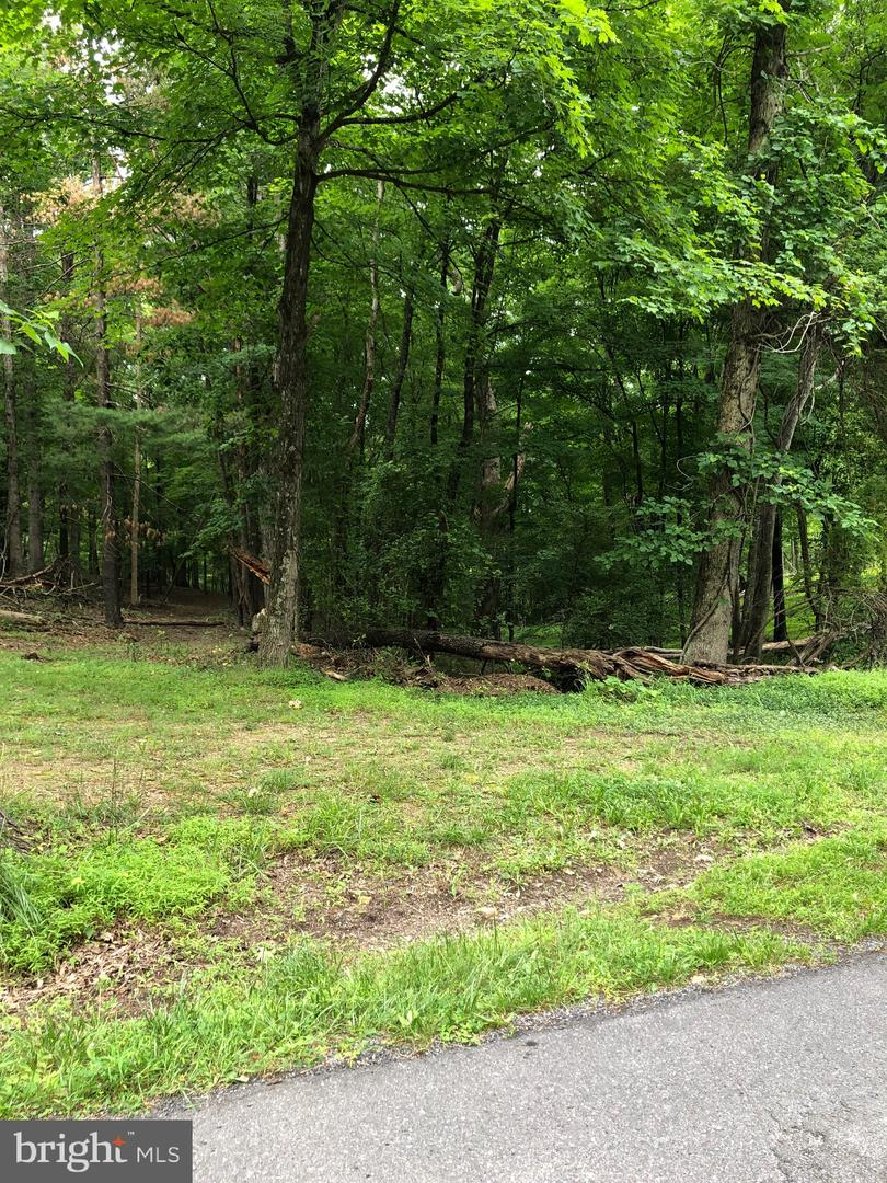 Land for Sale at Timber Ridge Rd Berkeley Springs, West Virginia 25411 United States