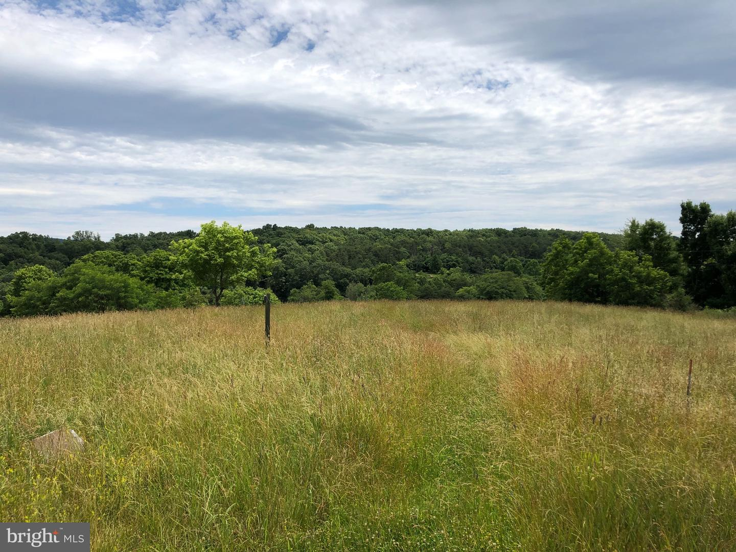 Land for Sale at 40 C & C Ln Berkeley Springs, West Virginia 25411 United States