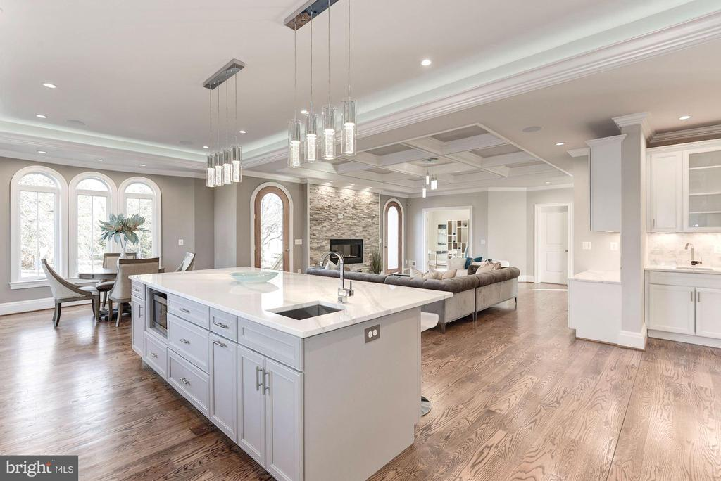 Luxury finishes built for royalty! - 2015 ARLINGTON RIDGE RD, ARLINGTON