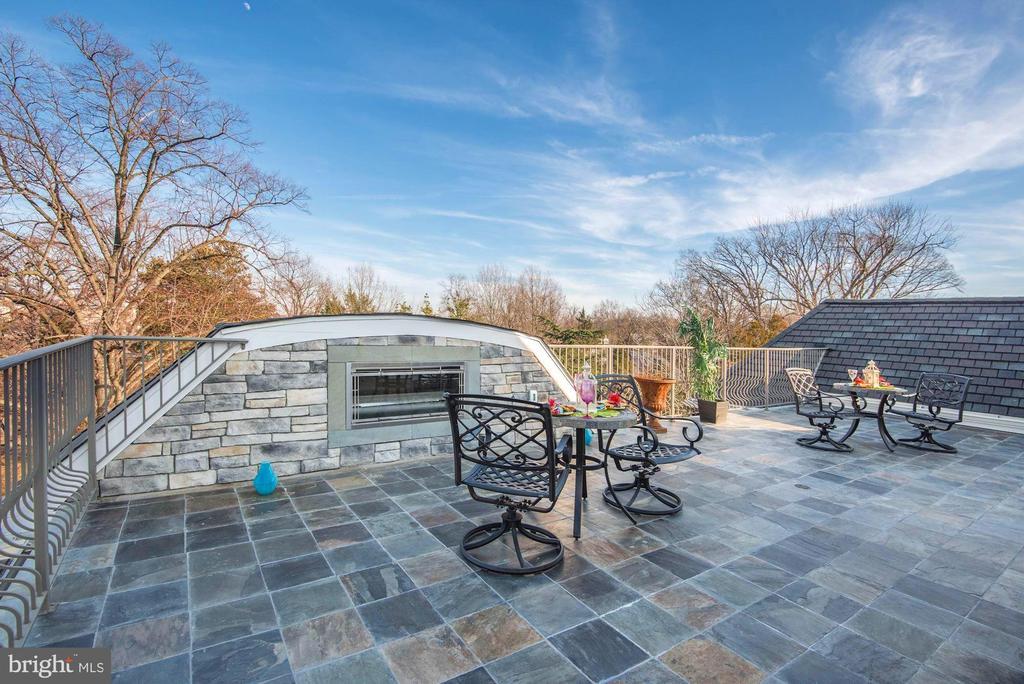 Flagstone Roof terrace w/FP and DC views! - 2015 ARLINGTON RIDGE RD, ARLINGTON
