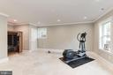 Lower level fitness/bedroom. - 2015 ARLINGTON RIDGE RD, ARLINGTON