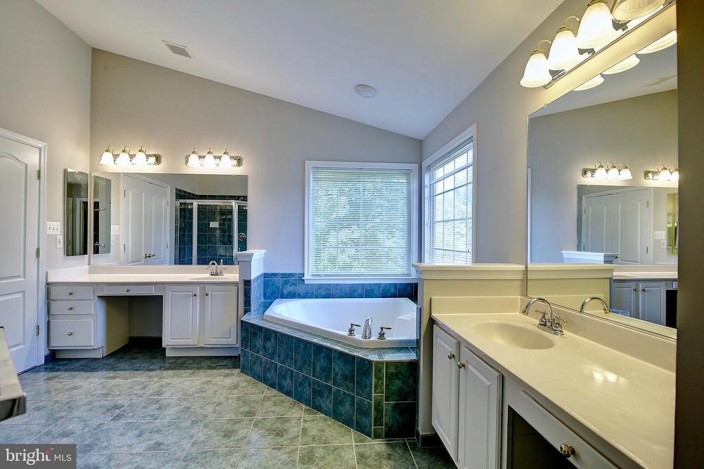 Master Bathroom - 21368 STURMAN PL, BROADLANDS