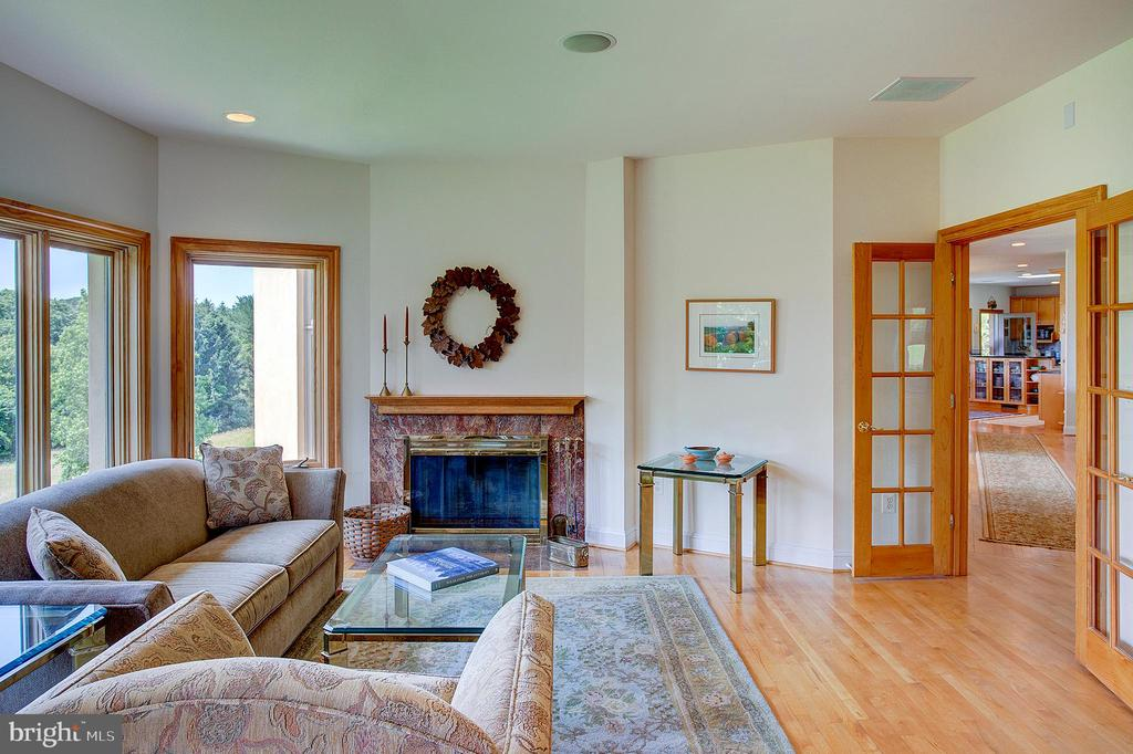 Library with fireplace - 20781 UNISON RD, ROUND HILL