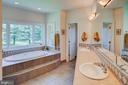 Master bathroom - 20781 UNISON RD, ROUND HILL