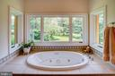 Master jetted tub - 20781 UNISON RD, ROUND HILL
