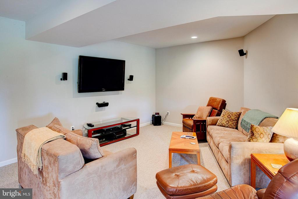 Lower level tv area - 20781 UNISON RD, ROUND HILL