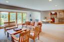 Lower level family room - 20781 UNISON RD, ROUND HILL