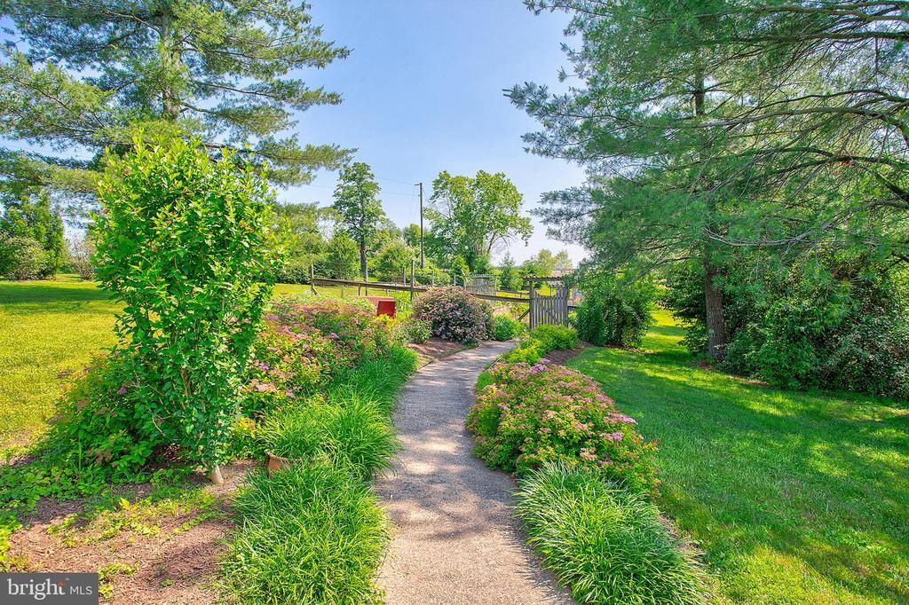 Path to the garden - 20781 UNISON RD, ROUND HILL