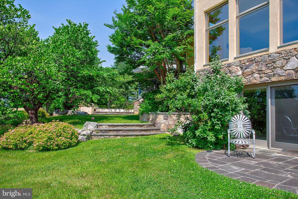 Patio and yard - 20781 UNISON RD, ROUND HILL