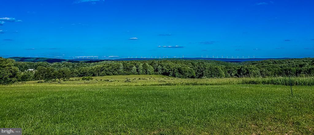 土地,用地 为 销售 在 Terra Alta, 西弗吉尼亚州 26764 美国
