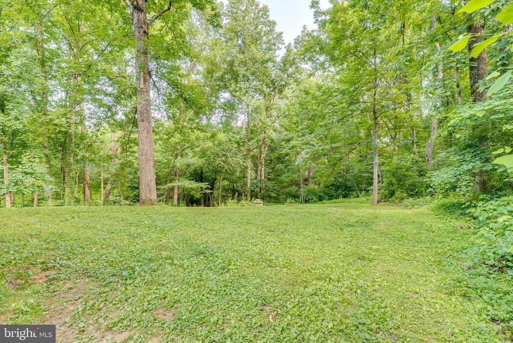 Over 6 acres to explore!  Bring your horses - 16332 HAMPTON RD, HAMILTON