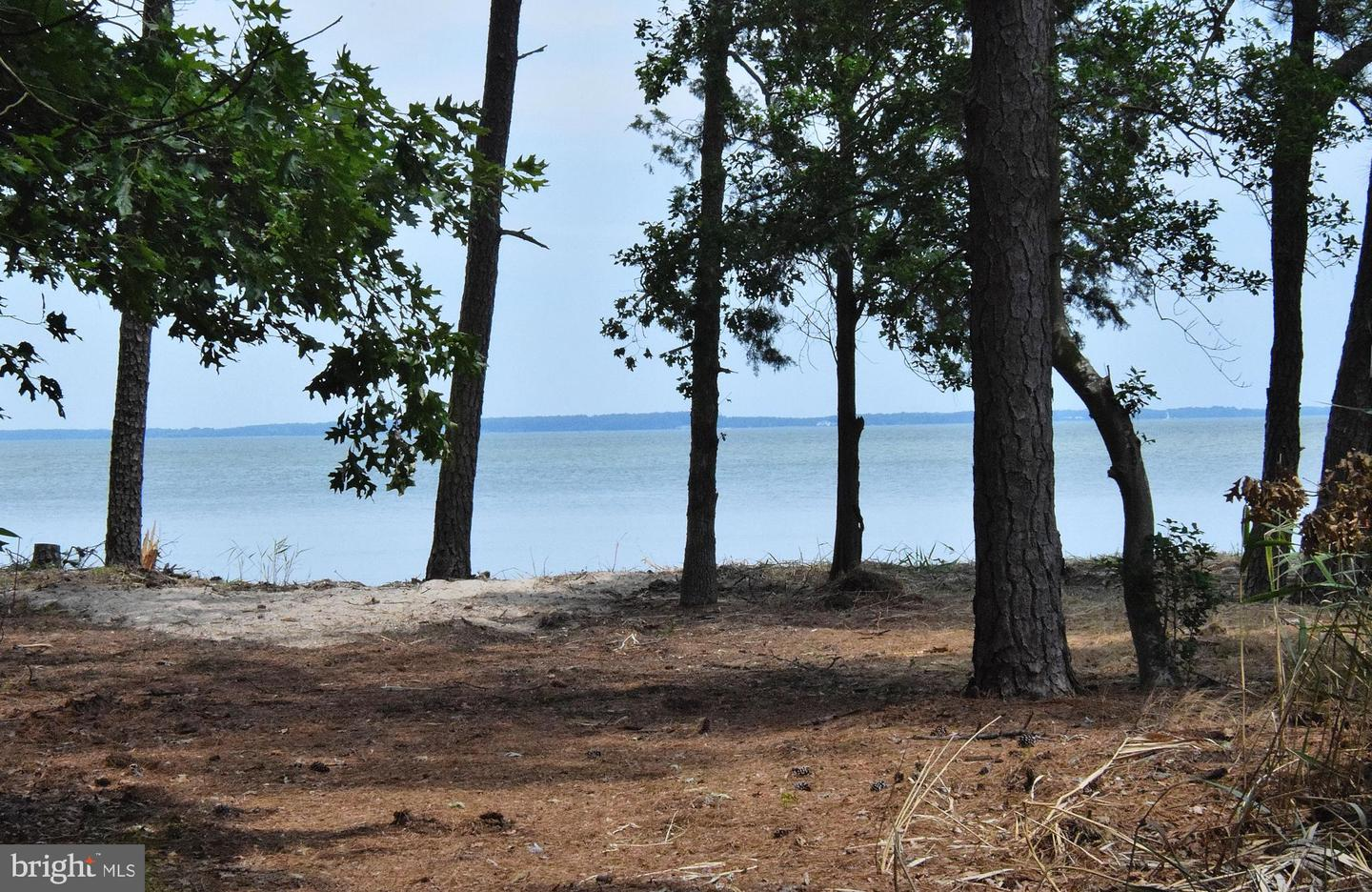 Land for Sale at 6021 Corners Wharf Rd Cambridge, Maryland 21613 United States