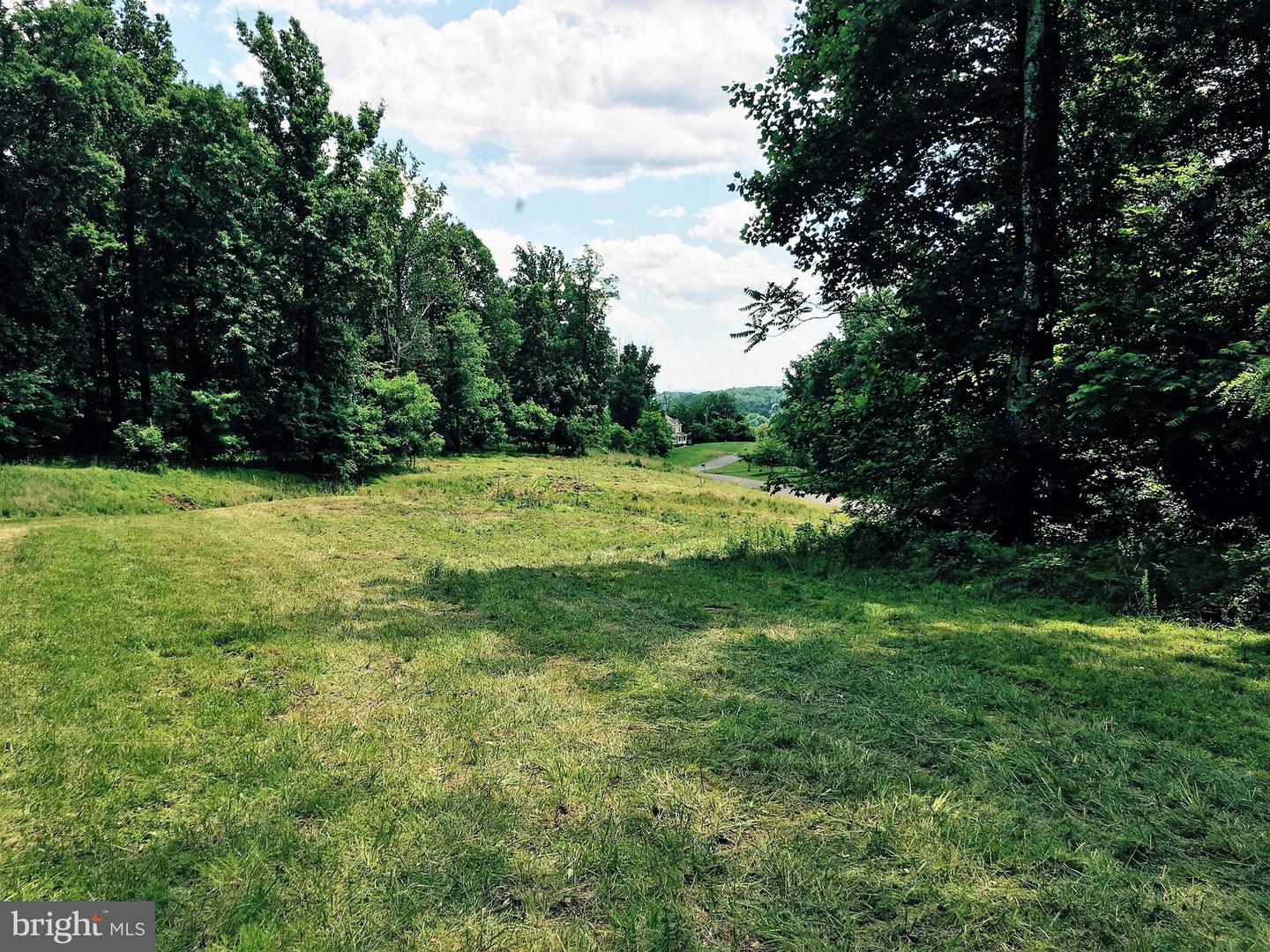 Land for Sale at 35345 Round Knoll Ct Round Hill, Virginia 20141 United States