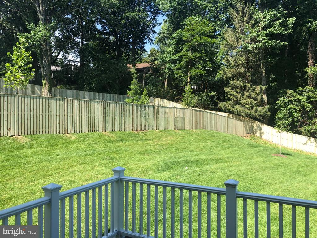 Fenced in Rear Yard- Backing to Trees - 4339 26TH ST N, ARLINGTON