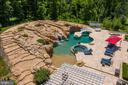 Pool w/fire features, waterfall, slides, hot tub - 14416 LOYALTY RD, LEESBURG