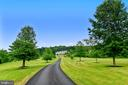Tree lined drive welcomes you home - 14416 LOYALTY RD, LEESBURG