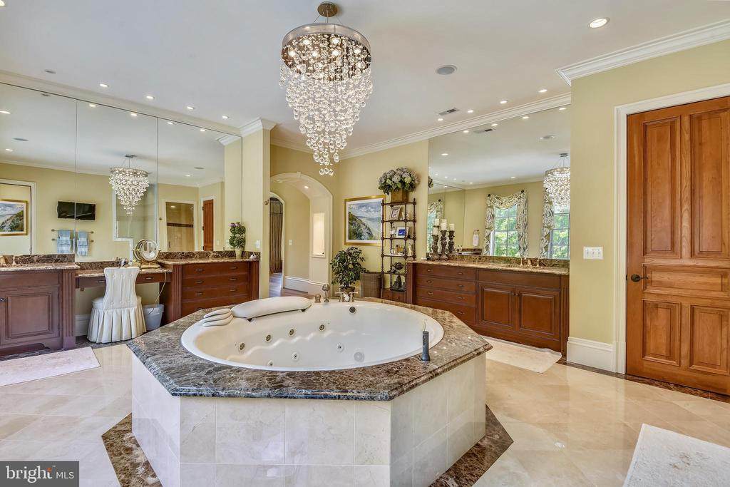 Owners' suite luxury bath - 14416 LOYALTY RD, LEESBURG