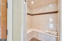 Owners' suite separate steam shower - 14416 LOYALTY RD, LEESBURG
