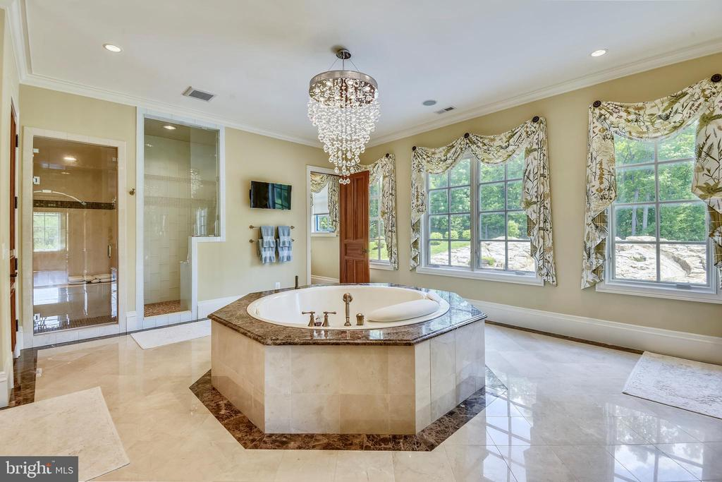 Owners' bath w/  separate steam shower, jetted tub - 14416 LOYALTY RD, LEESBURG