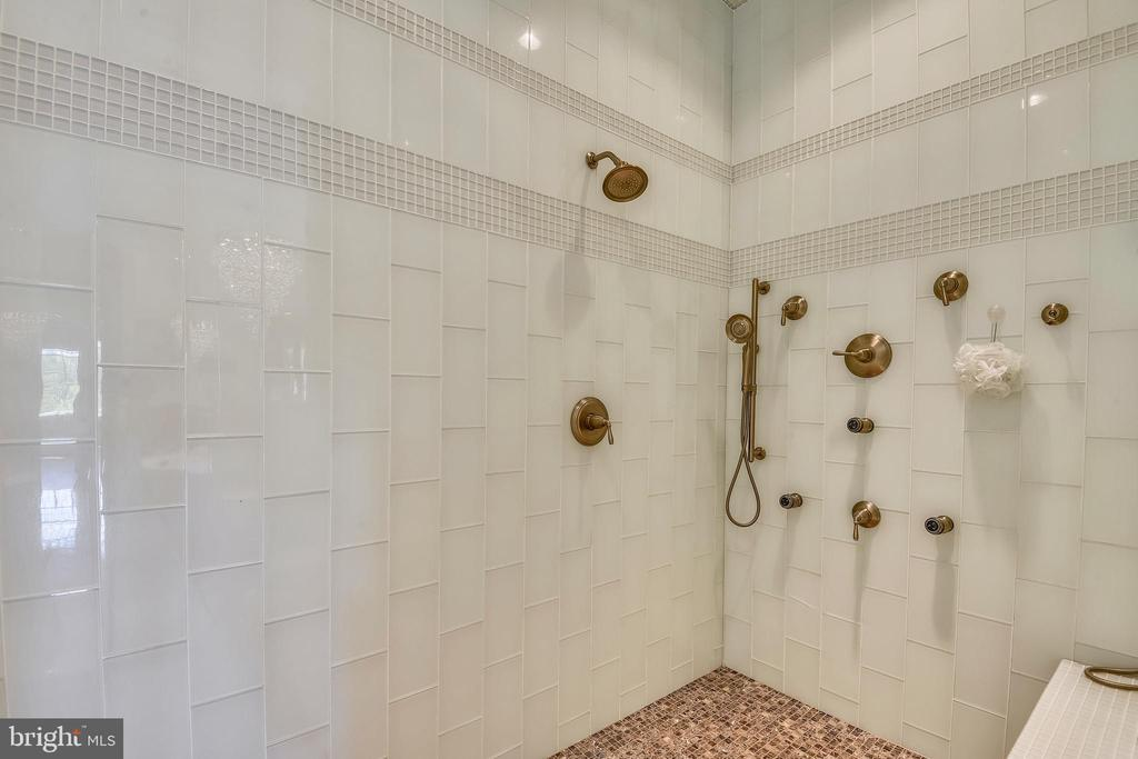 Owners' suite oversized spa shower - 14416 LOYALTY RD, LEESBURG
