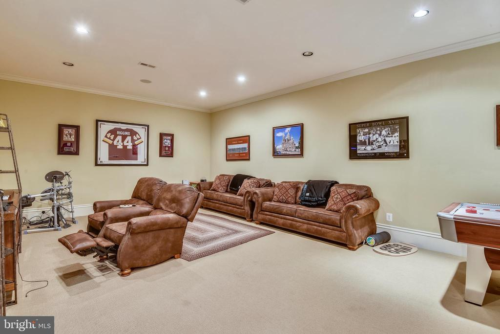 TV/gaming room in basement - 14416 LOYALTY RD, LEESBURG