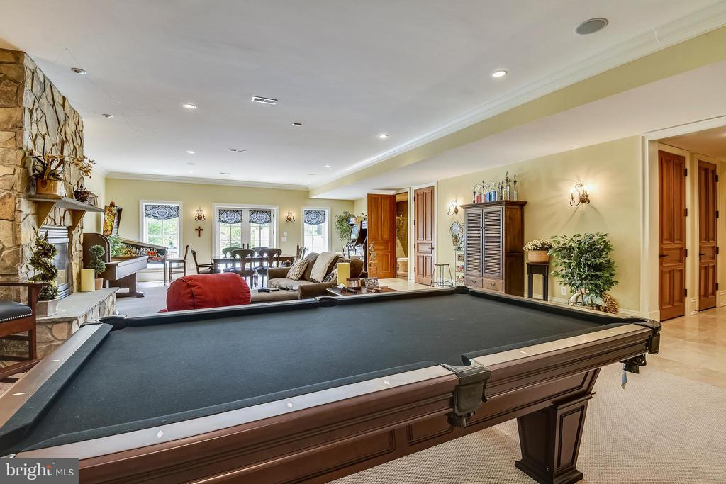 Walkout basement game room leads to side patio - 14416 LOYALTY RD, LEESBURG