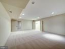 Lower level recreation room - 4412 WALSH ST, CHEVY CHASE