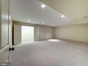 Lower level recreation room with storage room - 4412 WALSH ST, CHEVY CHASE