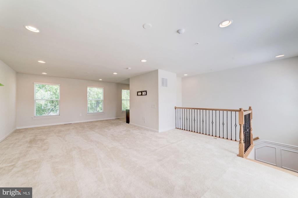 Loads of Space in Rec Area - 3965 OAK ST, FAIRFAX