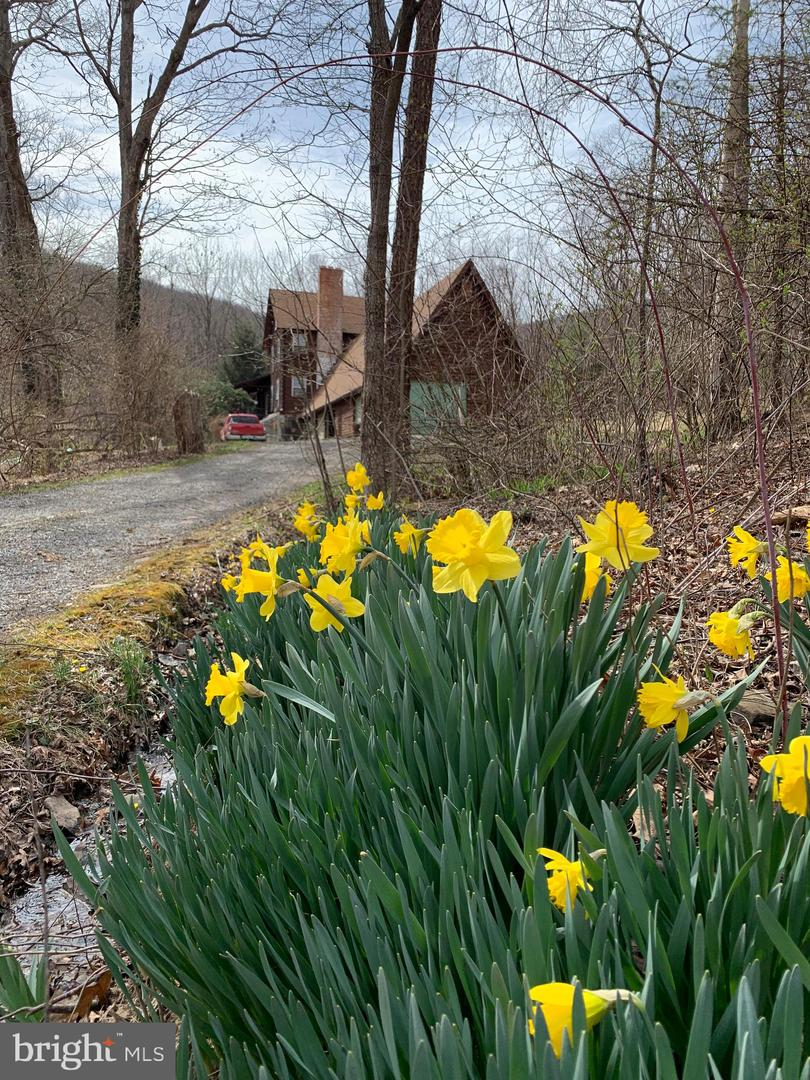 Single Family for Sale at 1595 Pine Swamp Road Keyser, West Virginia 26726 United States