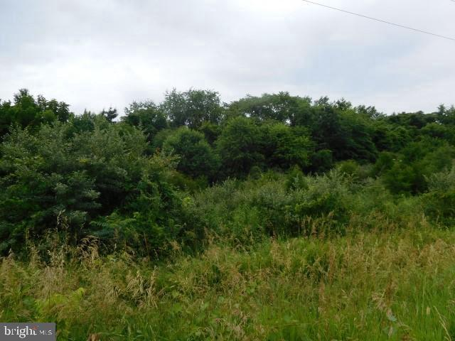 Land for Sale at Broad Lane Falling Waters, West Virginia 25419 United States