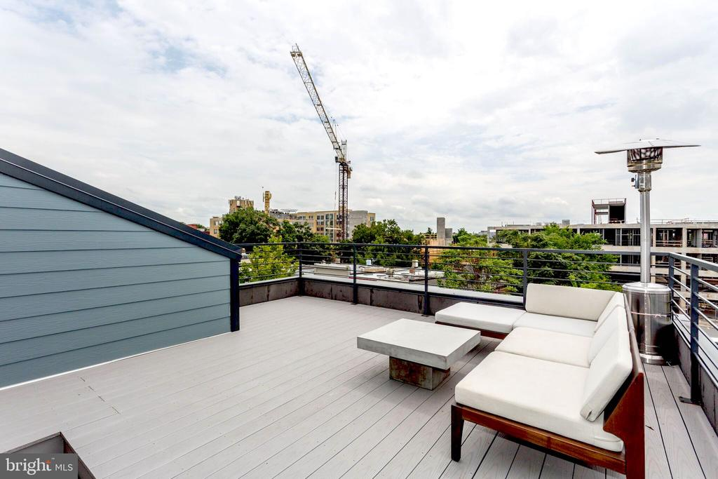 Unmatched Private terrace, panoramic view of DC - 763 MORTON ST NW #4, WASHINGTON