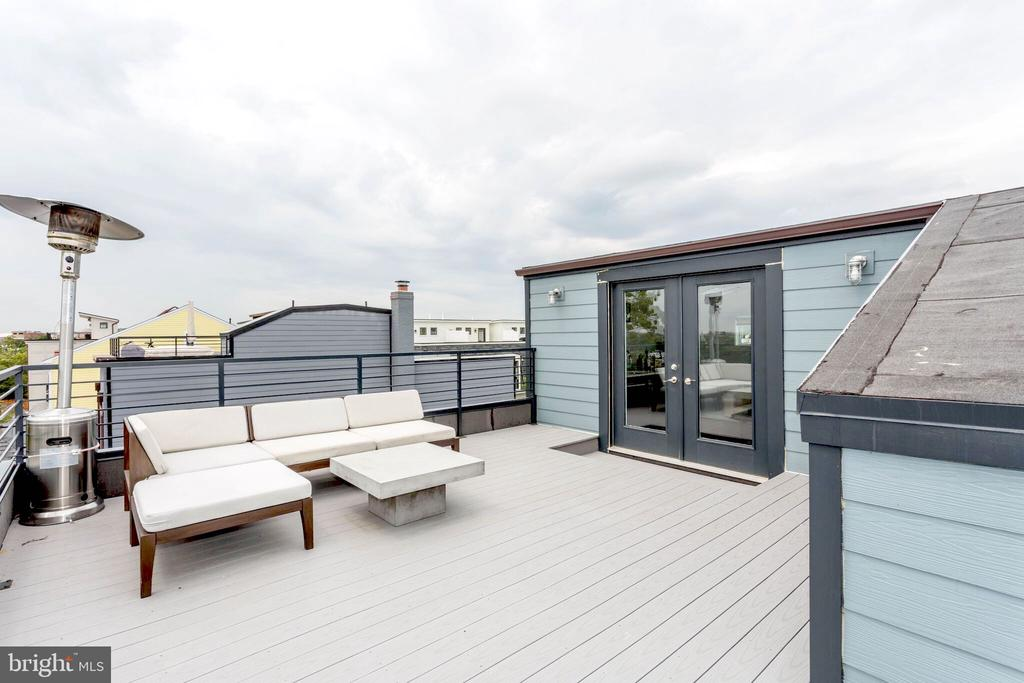 Unmatched Private  terrace, panoramic view of  DC. - 763 MORTON ST NW #4, WASHINGTON