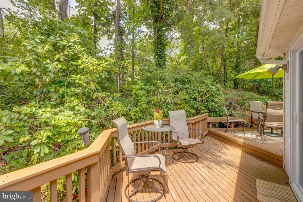 The Wrap around Deck - 8405 TERRA WOODS DR, SPRINGFIELD