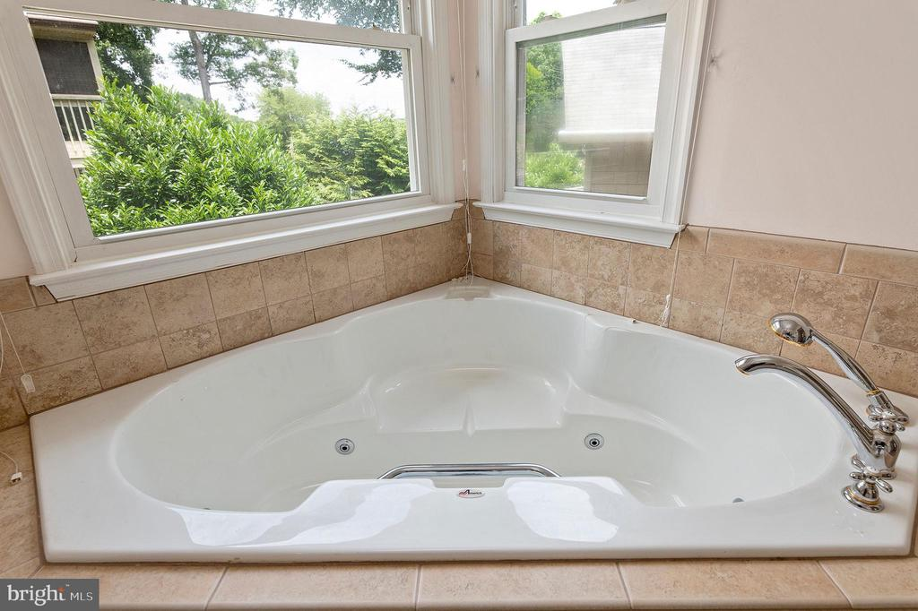 JACUZZI TUB IN THE OWNER'S BATHROOM - 100 HARBOURVIEW DR, LOCUST GROVE