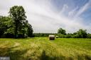 Gorgeous Fields Ideal for Horses - 20659 FURR RD, ROUND HILL