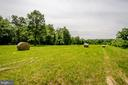 Fantastic Area of Equestrian Pursuits and Ride Out - 20659 FURR RD, ROUND HILL