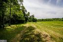 Large Stand of trees in addition to rolling pastur - 20659 FURR RD, ROUND HILL