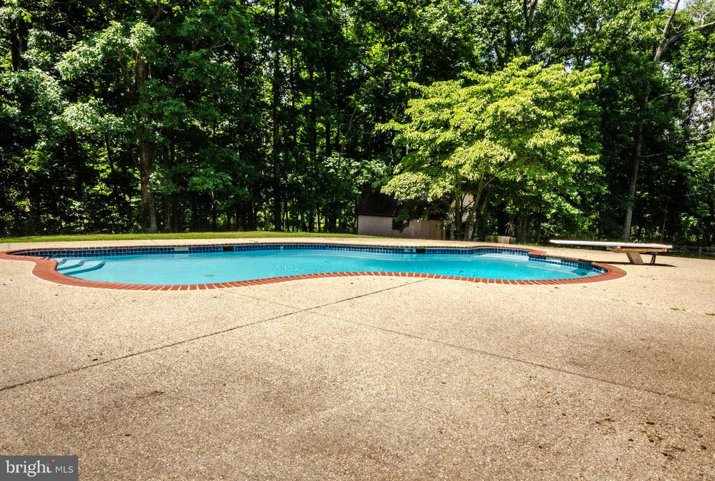 Serene Pool just outside Master Bedroom - 20659 FURR RD, ROUND HILL