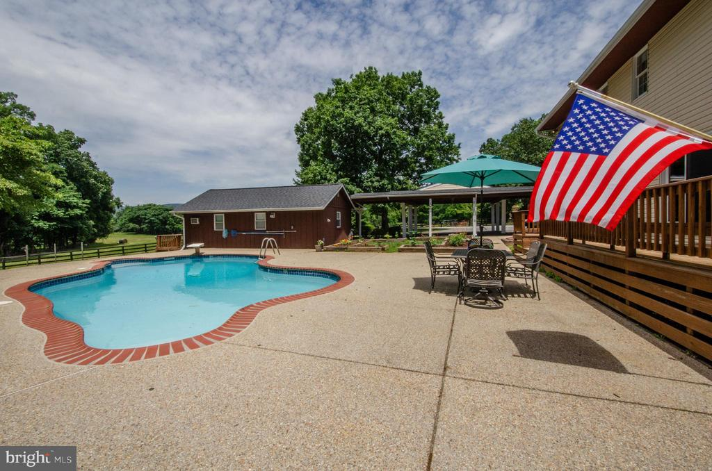 Outdoor living with free form pool w/ diving board - 20659 FURR RD, ROUND HILL