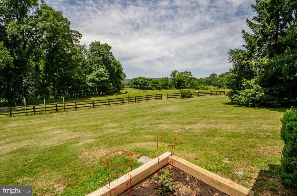 View from Guest deck - 20659 FURR RD, ROUND HILL