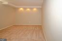 Lower Level bonus room - 20659 FURR RD, ROUND HILL