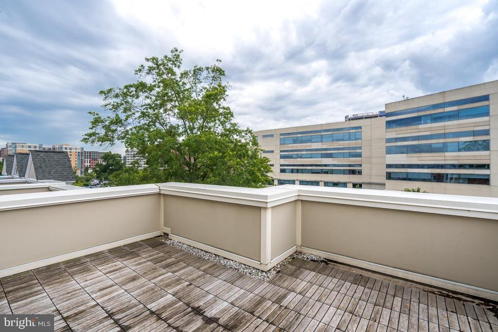 Private Roof-top Deck perfect for entertaining - 800 3RD ST SE, WASHINGTON