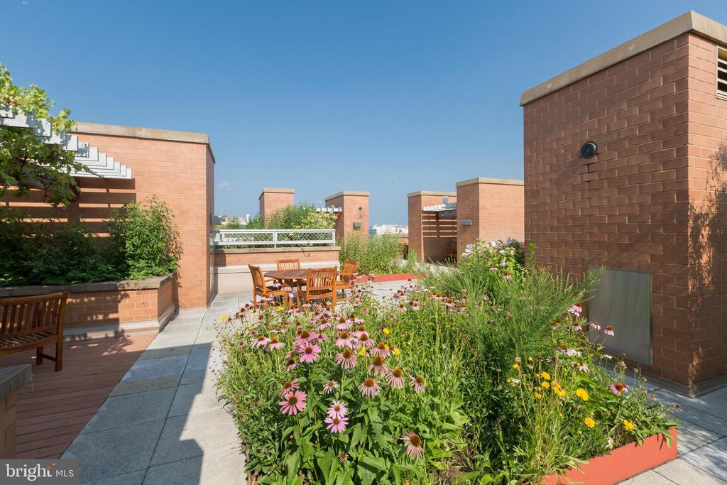 Rooftop garden - 631 D ST NW #835, WASHINGTON