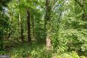 Glover Archbold Park - 4114 DAVIS PL NW #4, WASHINGTON