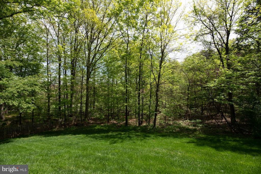 Tranquil backyard - 21470 BASIL CT, BROADLANDS