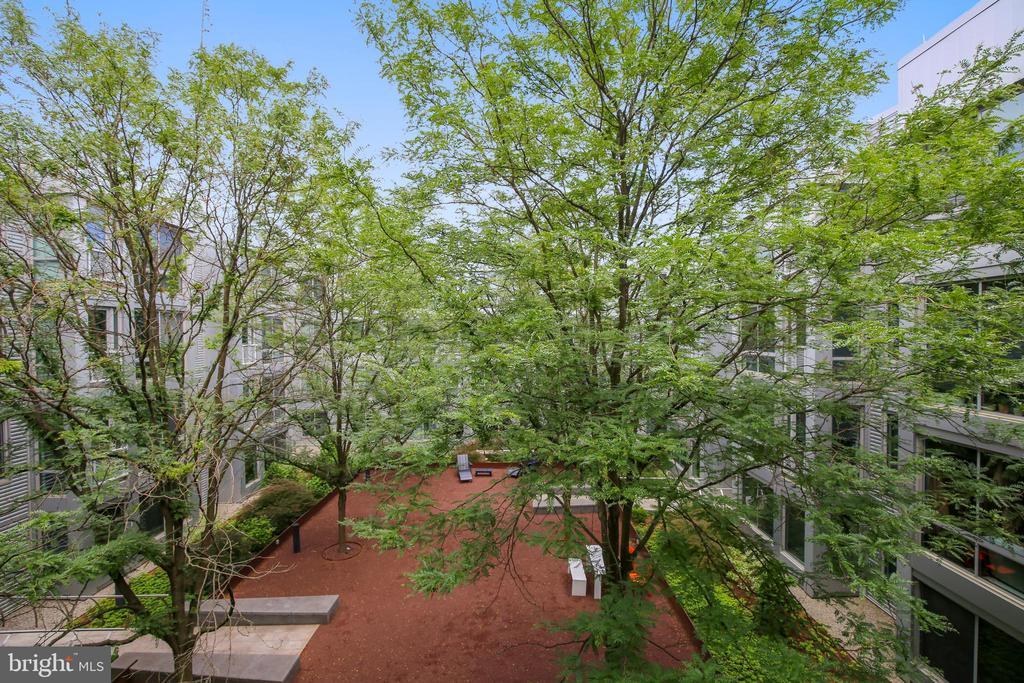Peaceful courtyard view - 4101 ALBEMARLE ST NW #503, WASHINGTON