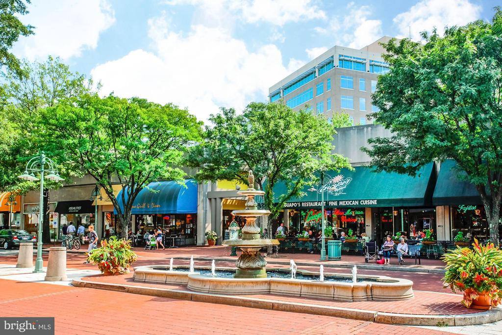 Shirlington Community - Very Pedestrian Friendly - 4636 36TH ST S #A, ARLINGTON